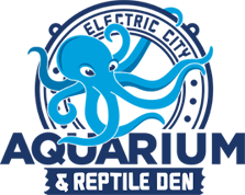 Electric City Aquarium & Reptile Den